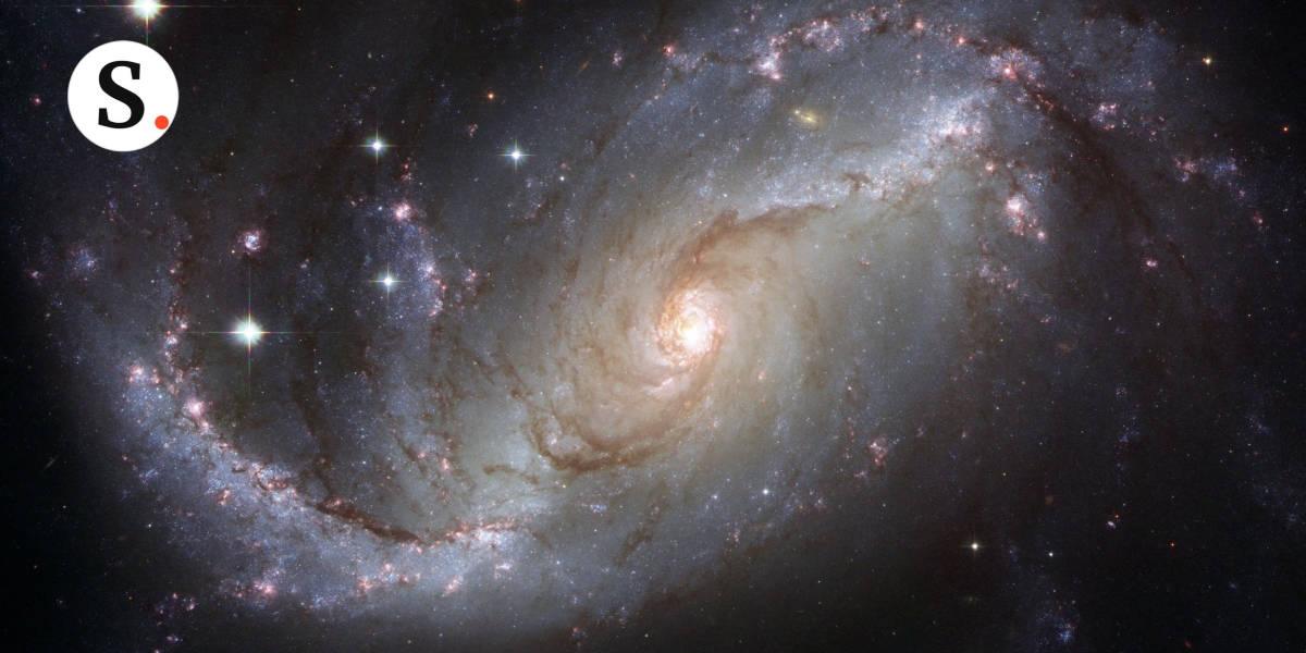 โคลนตมหรือดวงดาว? อยู่ที่คุณเลือกมอง